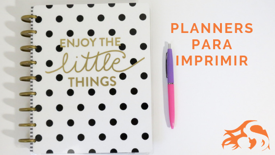 18 Planners para imprimir 2019 [DOWNLOAD GRATUITO]