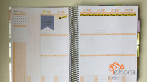 parte da agenda semanal do daily planner 2019 Paperview