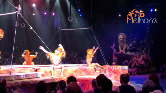 imagem do Festival os the Lion King - roteiro animal kingdom com criança