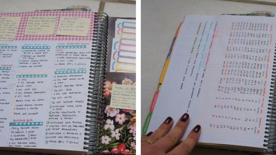 exemplos de páginas extras do planner