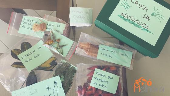 criança e meio ambiente: os diversos elementos da caixa