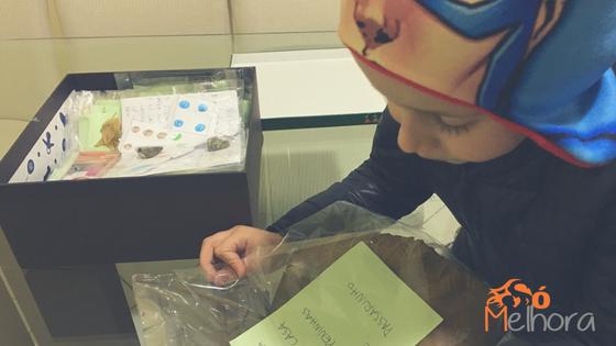 menino montando uma caixa da natureza