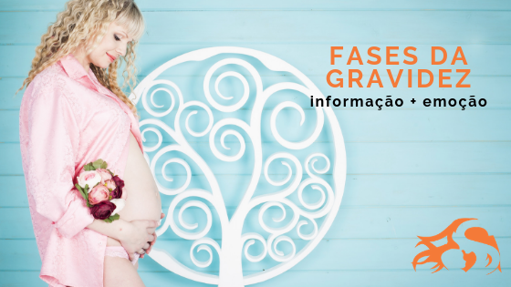 Fases da gravidez: sintomas e ansiedade mês a mês