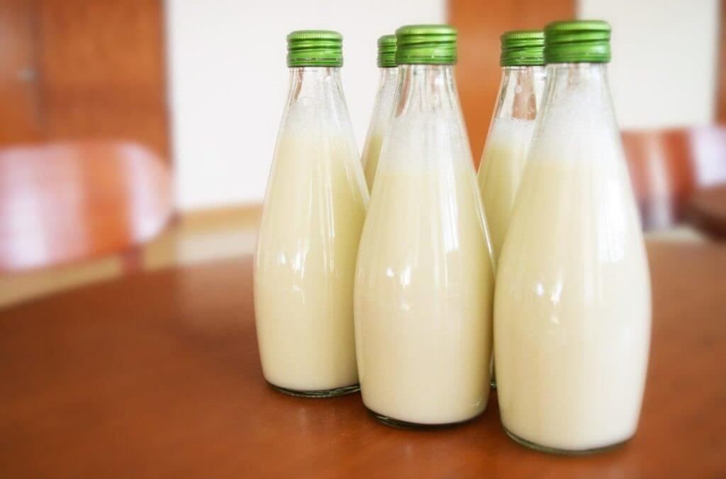 Leite de aveia é uma opção nutritiva de leite vegetal?
